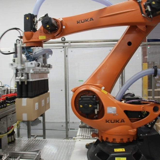 Pick & Place Robotic Application | Robot Case Packer-Palletizer